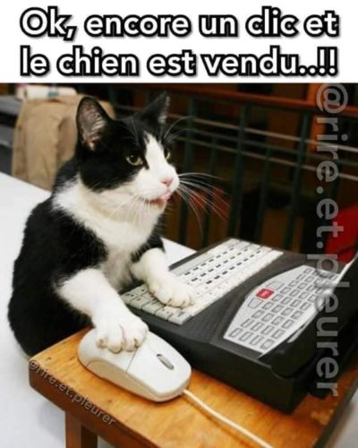 Chat!!!